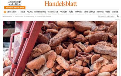 Bericht im Handelsblatt